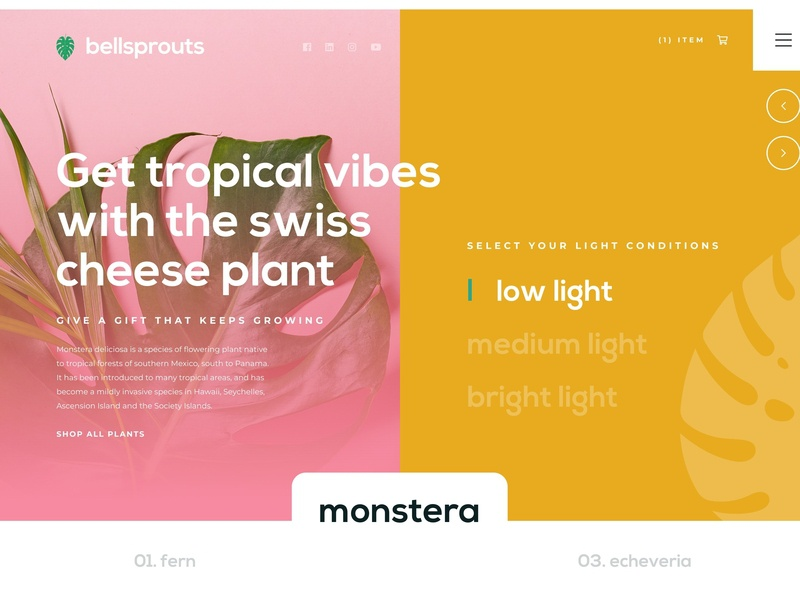 Bellsprouts Landing Page - Low Light Plants logo landing page concept landing page design landing page digital art desktop ui ux digital marketing interface design ux graphic design plant logo plant design digital design web design website user interface user experience