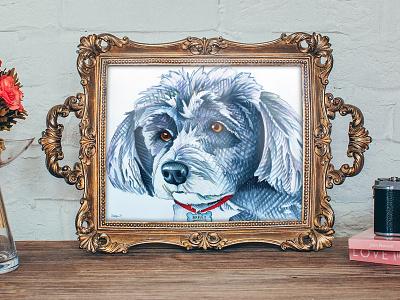 Schnauzer Pet Portrait prismacolor marker illustration hale the creative pet portrait