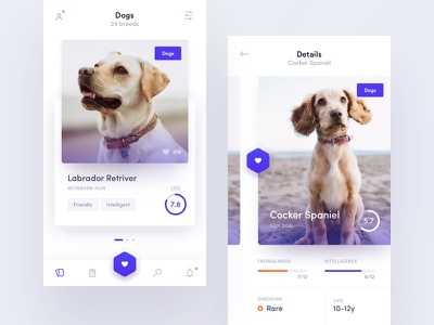 Breed Mobile App swipe app ux ui discovery cards mobile cat dog breed