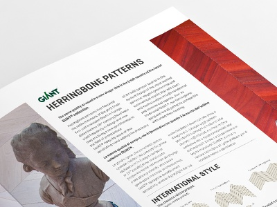 Brand Giant Magazine Close Up corporate brand