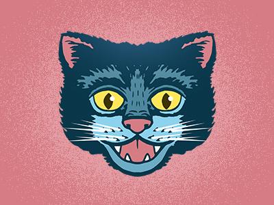 Miau animals animal cats cat