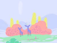 Couple of deer wandering