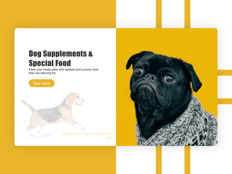 Pet Care | Dog | Animal | Pet | Web | Design