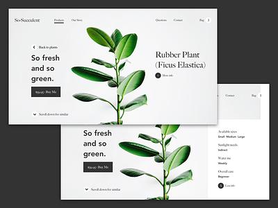 So-Succulent Landing Page web design ux ui visual design landing page
