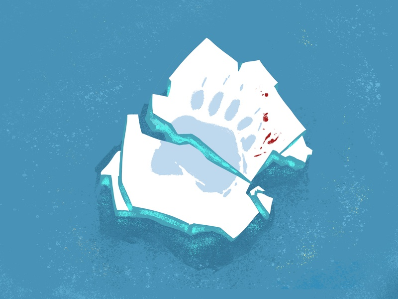 A piece of ice protect the natural animal illustration