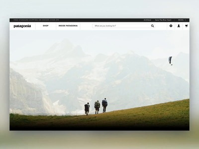 Daily UI 008 404 - Patagonia 404 Design