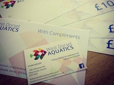 West Dorset Aquatics logo fish branding