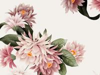 In Bloom Yardage