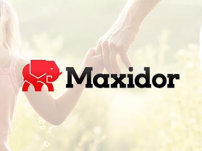 Maxidor Rebrand shield defence trust elephant logo branding rebrand gates security maxidor