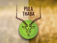 Pula Thaba Safaris