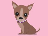 Chihuahua Warmup Sketch