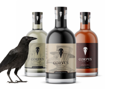 Corvus: Product Design