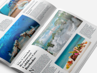Carrier: Travel Guides