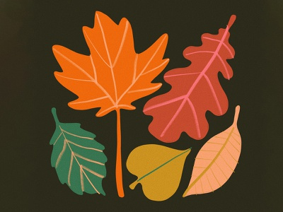 Autumn leaves leahschmidt flowers art design illustration procreate drawing leah schmidt leahschm earth nature tree leaves foliage fall autumn