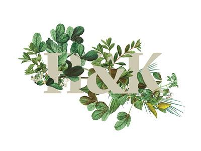 Botanical Typography botanicals botanical logo foliage nature image manipulation design typography