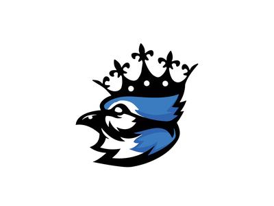 Blue Jay Artwork
