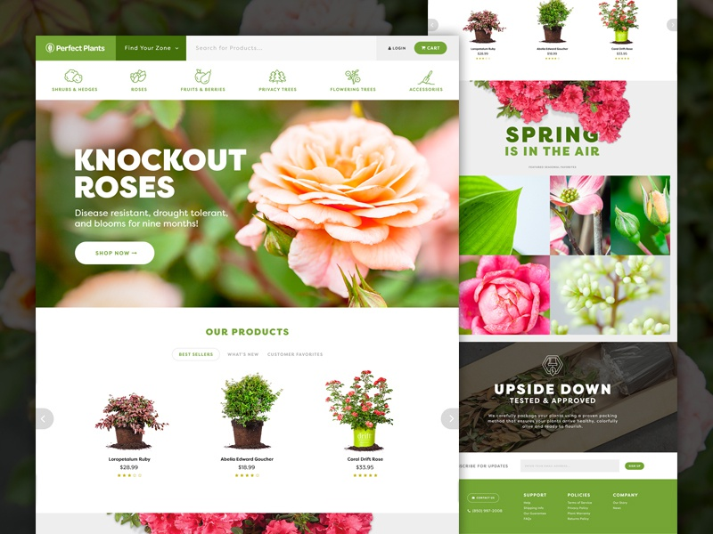Perfect Plants Homepage homepage interface isolated icons plants ecommerce taproot creative ui website web