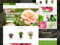 Perfect Plants Homepage