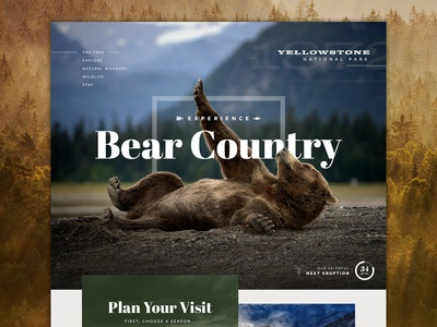 Yellowstone NP Preview yellowstone bear travel park preview hero header homepage interface ui website