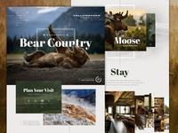 Yellowstone NP Full nature slider website ui interface header hero one pager park travel bear yellowstone