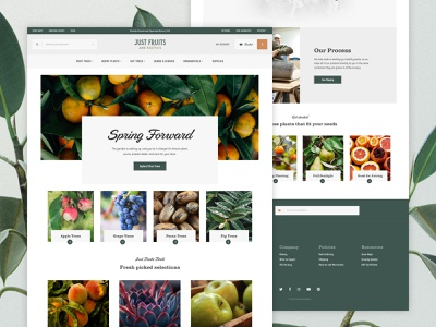 Just Fruits and Exotics Homepage shopping products fruits plants ecommerce homepage web interface website ui