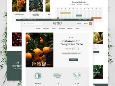 Just Fruits and Exotics Interior tabs calendar icons interior shopping plants products ecommerce web interface website ui