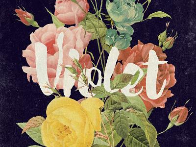 Violet vintage flowers roses poster art