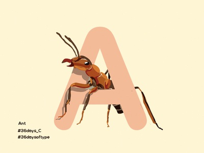 Ant - 36DaysofType