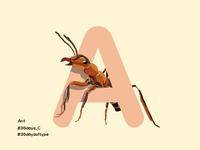 Ant - 36DaysofType
