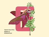 Elephant Hawk Moth - 36days Of Type