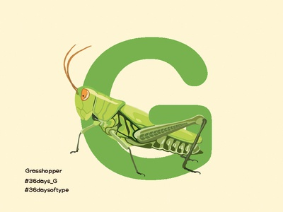 Grasshopper - 36days Of Type