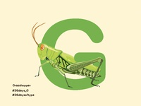 Grasshopper - 36days Of Type