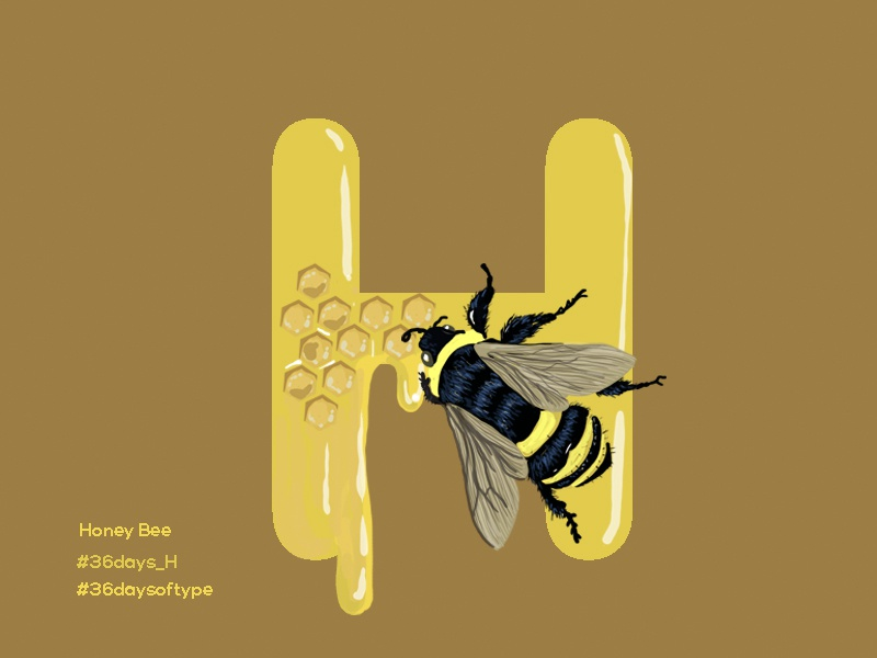 Honey Bee  - 36days Of Type alphabets graphic design design digital painting illustration pratikartz black yellow honeybee honeycomb honey typography design typography 36daysoftype