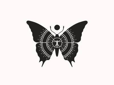 Butterfly Universe