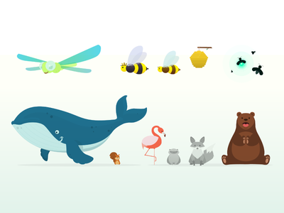 Animals Musical App simple music app vector squirrel whale dragonfly bees flamingo bear animals
