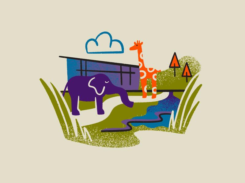 Valley Zoo giraffe colourful citymaps landmarks graphicdesign women of illustration gritty texture digital spotillustration procreate illustration