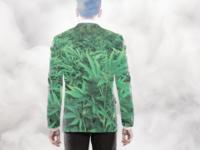 Marijuana millionaire - Editorial report