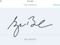 Additional details   sign   signiture drawn