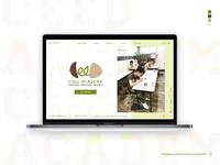 Website for Ceed Academy