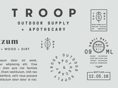 New Troop Branding Project wordmark typography identity logo design branding