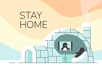 Stay Home after effects illustrator vector motion design animation 2danimation igloo penguin illustration motion 2d home