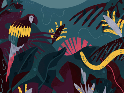 Bossa Nova design editorial design creative illustration