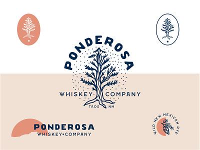 Whiskey Brand | Concept southwest trees vector design illustrator illustration branding logo