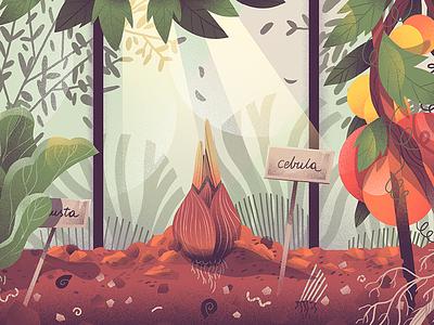 Onion Phase one dudzik iza dewizka onion illustration