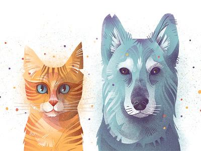 Cat Dog dudzik iza dewizka cat dog illustration