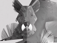 Boar | illustration webside