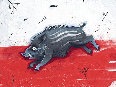 Boar dudzik illustration izadudzik poland boar