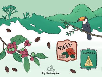 Coffee illustration, wall calendar, postcards
