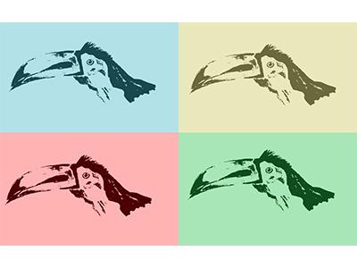 Tucan illustration