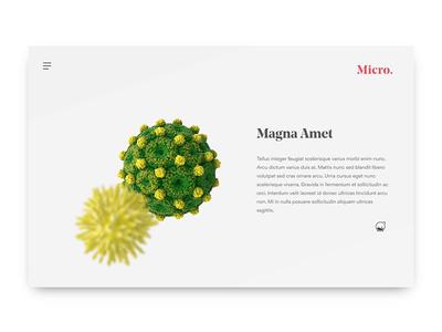 Micro. invision studio invision parallax scrolling parallax 3d vector illustration daily ui animation mockup
